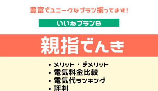 親指でんき いいねプランB|メリットデメリット・評判・北海道エリア電気料金比較